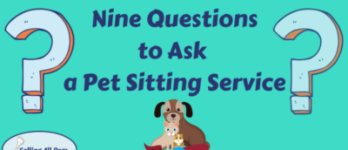 Nine Questions to Ask a Pet Sitting Service