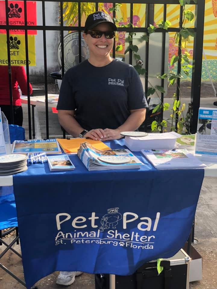 pet sitting clearwater