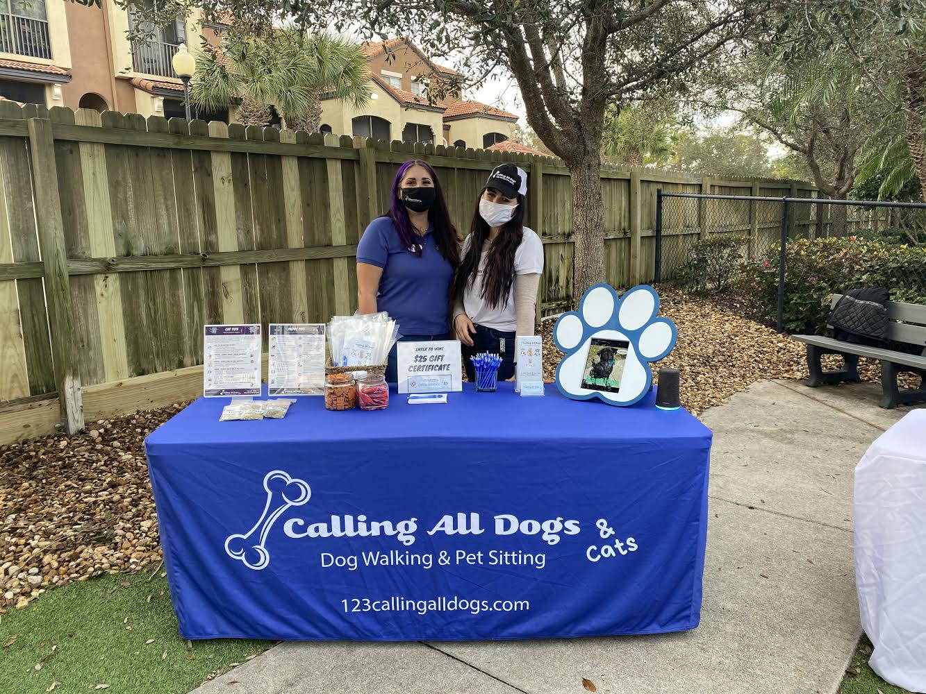 pet care and dog care